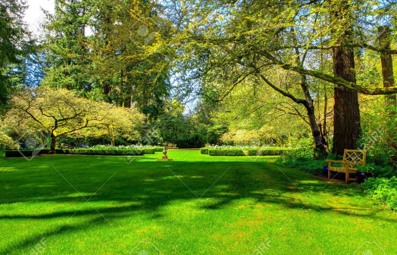 Wooden bench in a summer garden, nice green lawn - 58328703