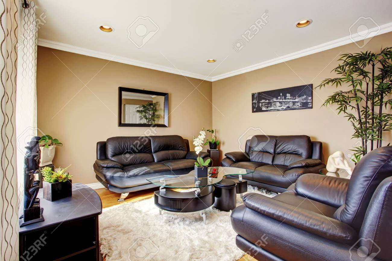 cozy and luxury living room with black leather sofa set and modern coffee table also