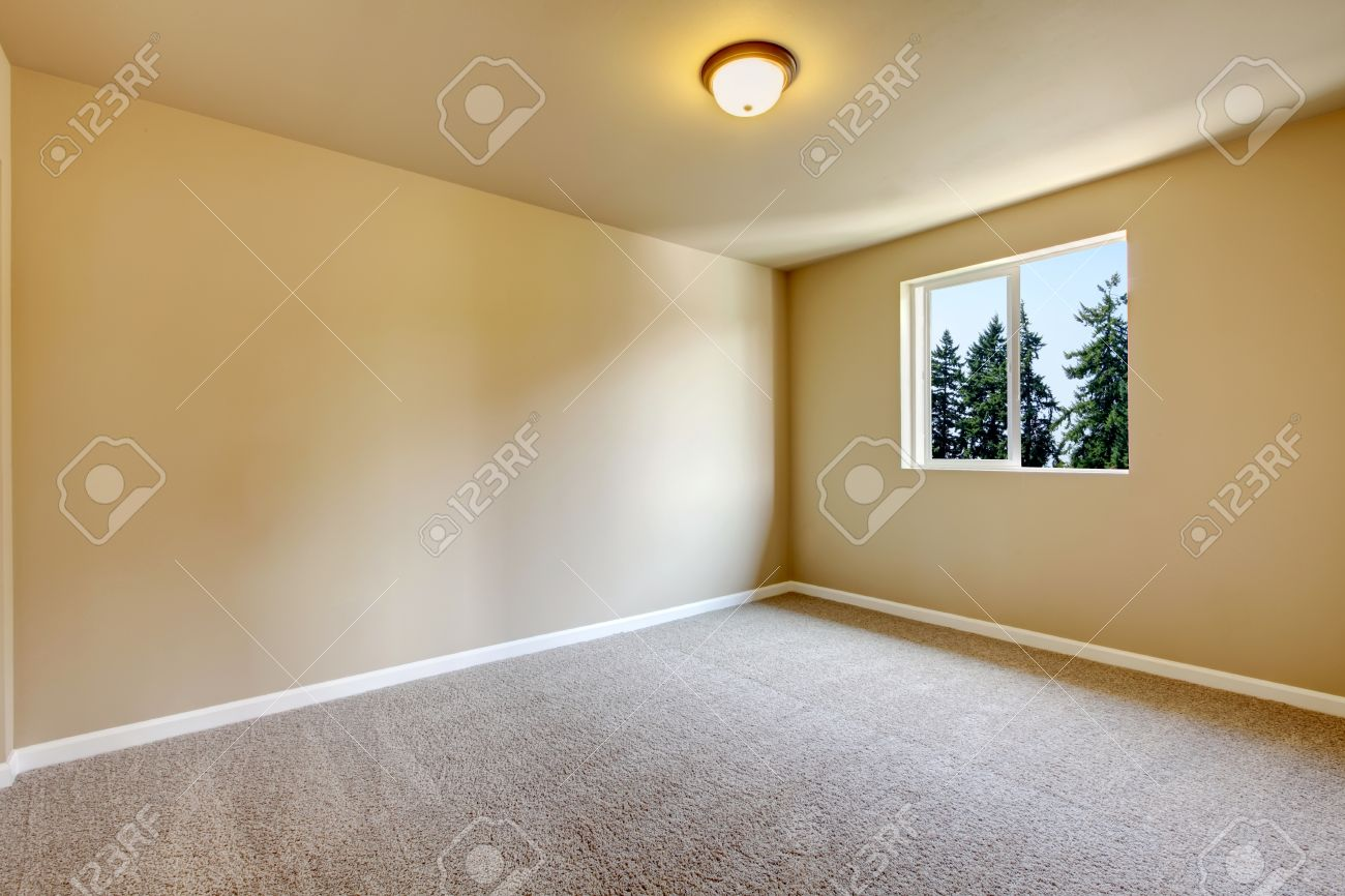 Bright Empty Room With One Window Light Gray Carpet Floor And Stock Photo Picture And Royalty Free Image Image 60762243