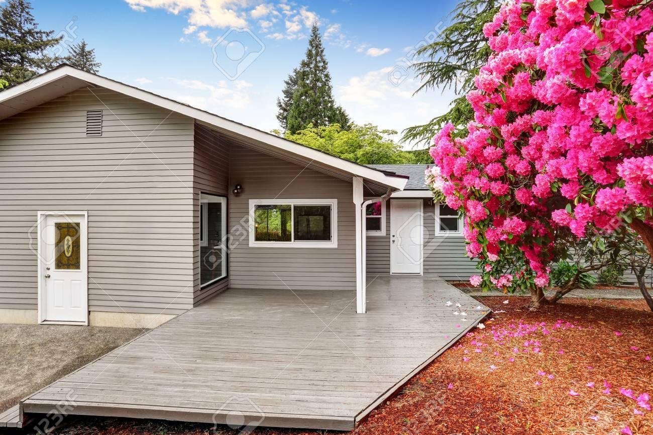 Well kept backyard garden of siding trim house with wooden walkout deck. Northwest, USA - 61274728