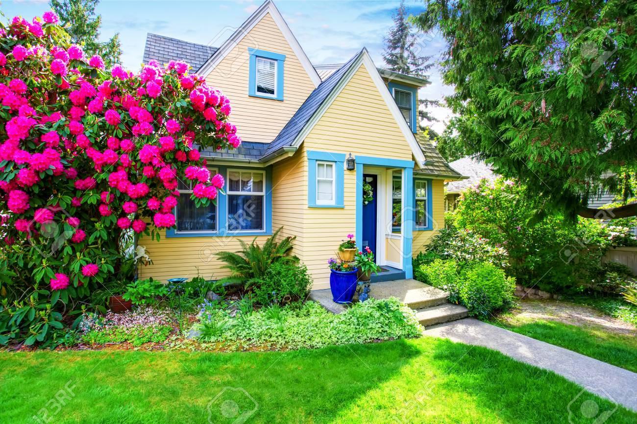 Exterieur De La Petite Maison Jaune Avec Rhododendron Fleuri Dans