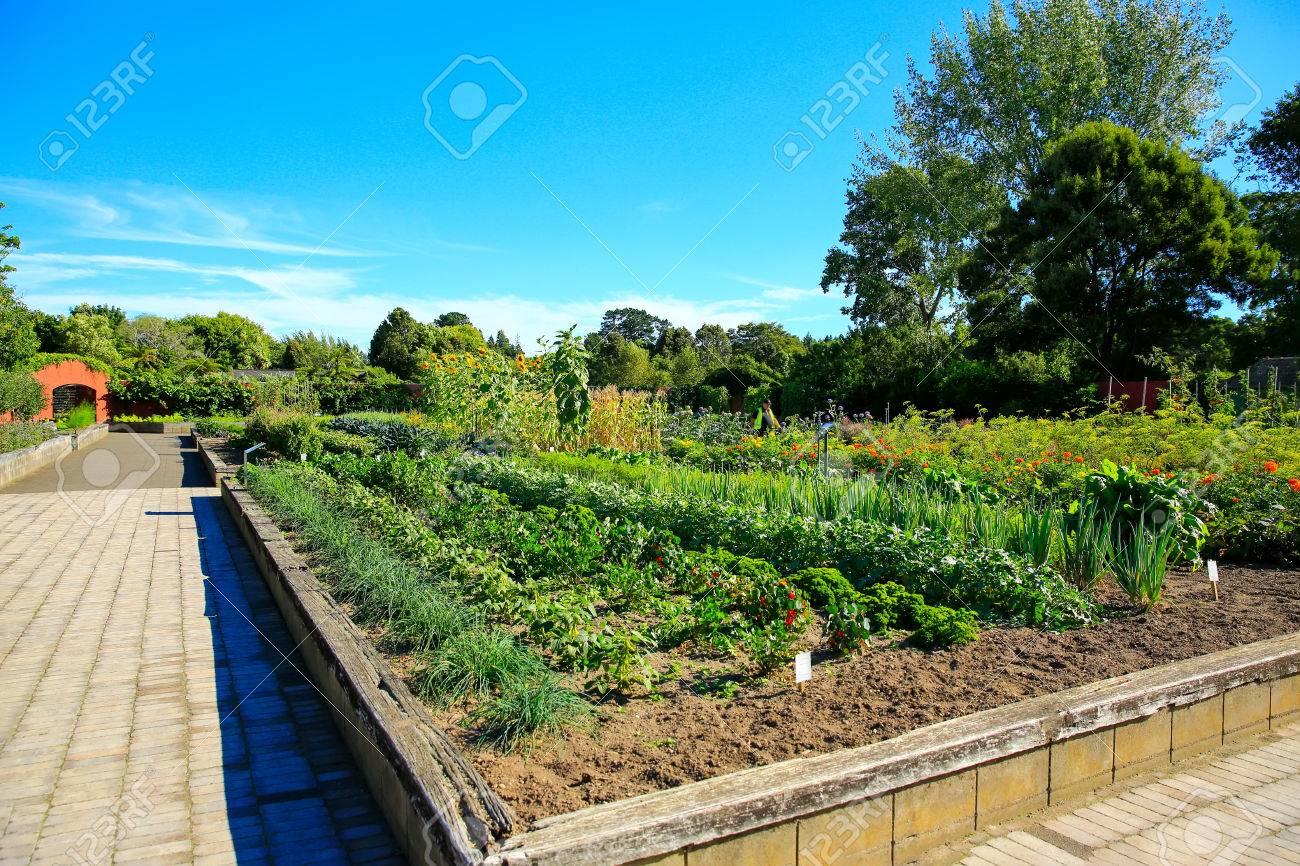 Lits De Legumes Sureleves Dans Le Jardin Cuisine Jardins Hamilton