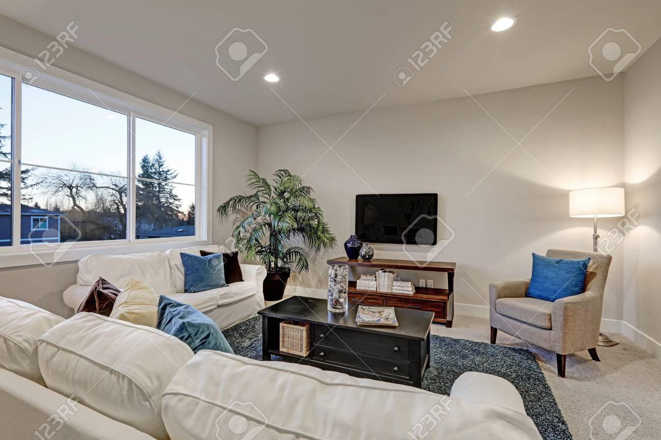 white and beige living room with blue accent rug atop beige carpet