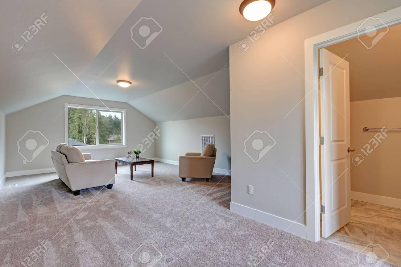 Gewölbte Decke Familie Zimmer Interieur Mit Grauer Farbe Farbe ...