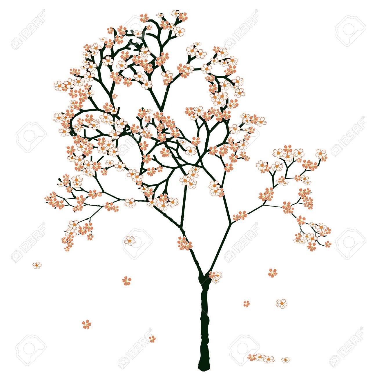 Sakura blooming tree, isolated on white Stock Vector - 17852672