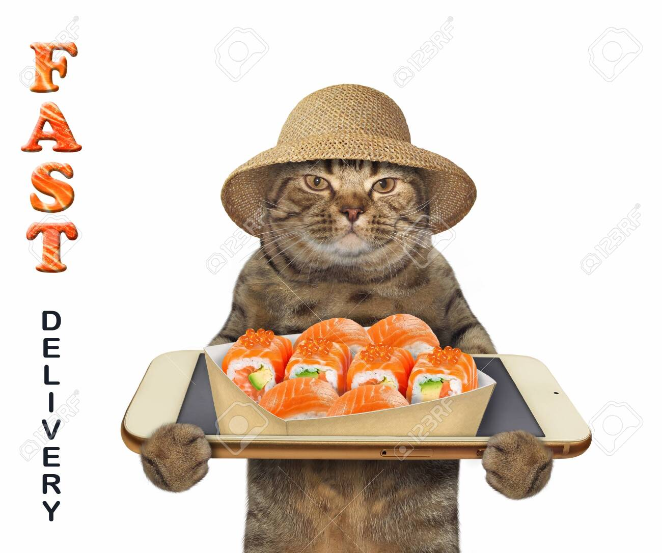The beige cat in a straw hat takes a paper box of sushi from a smartphone screen. Fast delivery. White background. Isolated. - 151209368