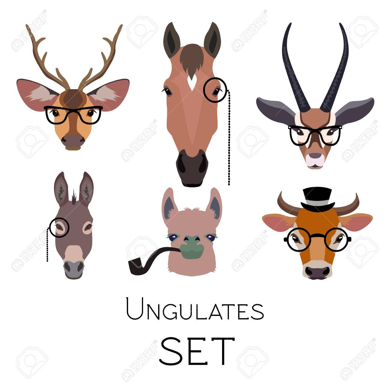 580362fa659 Vector - Vector hipster ungulates wearing monocle glasses or tobacco pipe  cloven hoofed animals set. Lama deer antelope donkey horse isolated Poster  banner ...