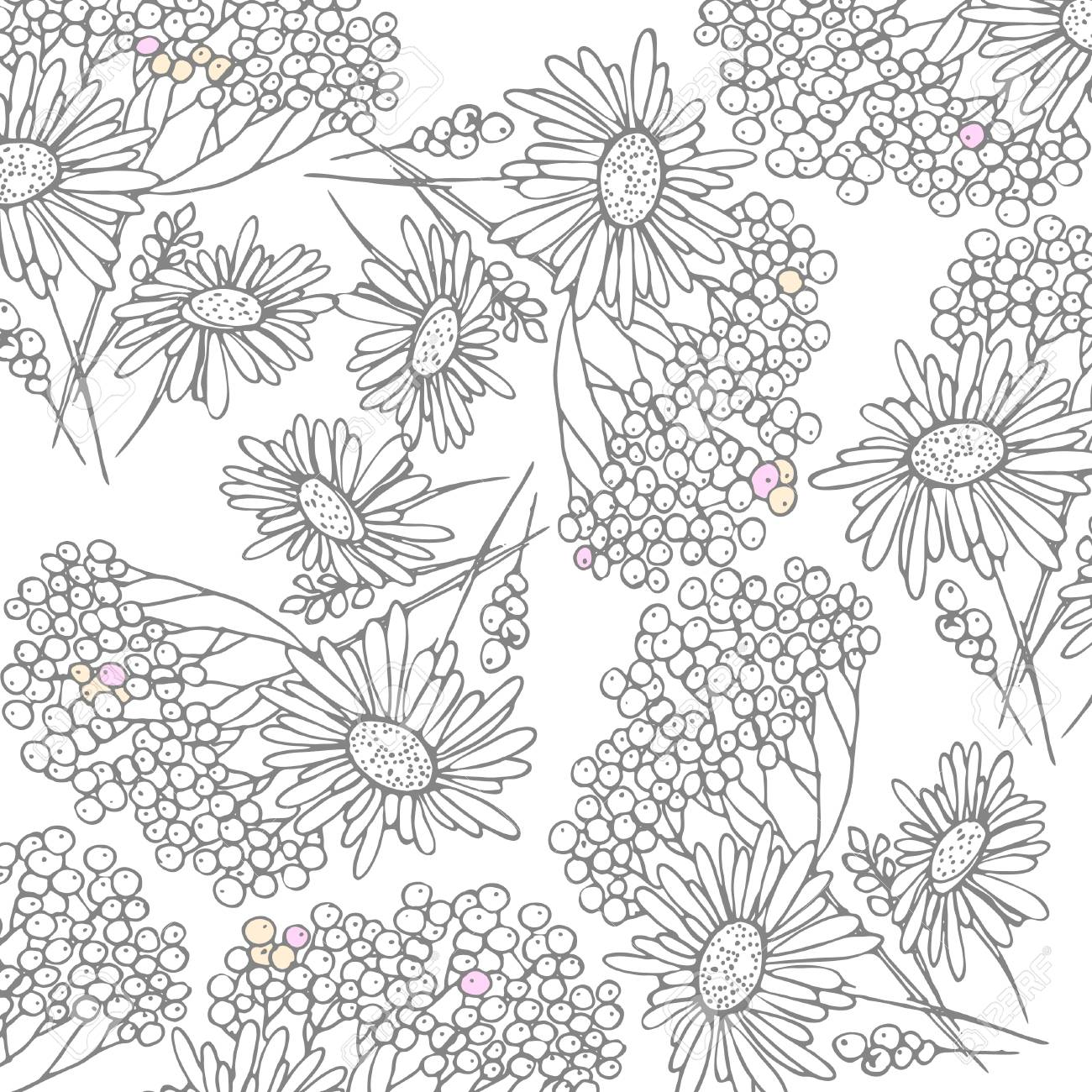Floral Texture With Chamomile On A White Background It Can Be