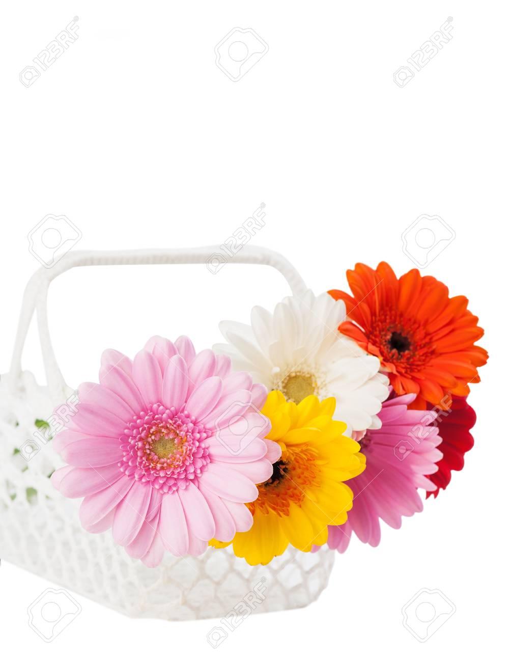 Gänseblümchen Blumen In Den Weißen Gehäkelten Korb. Blumen-Dekor Für ...