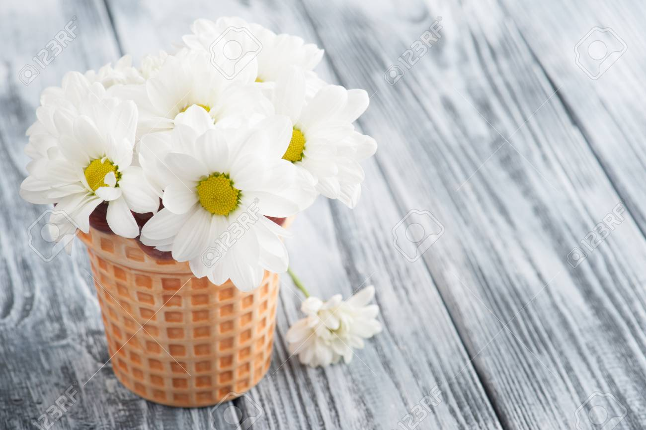 Fresh Daisy Flowers In Pot On Shabby Wooden Table Greeting Card