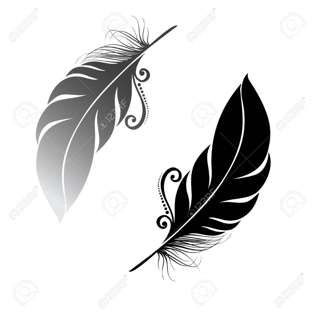 Peerless Decorative Feather - 26470439