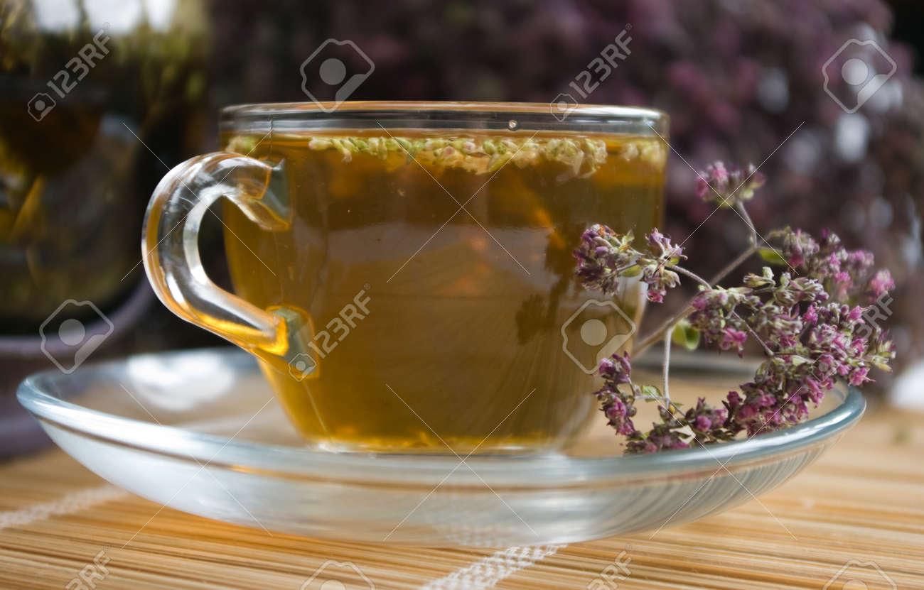 Curative tea with origanum Stock Photo - 3711557