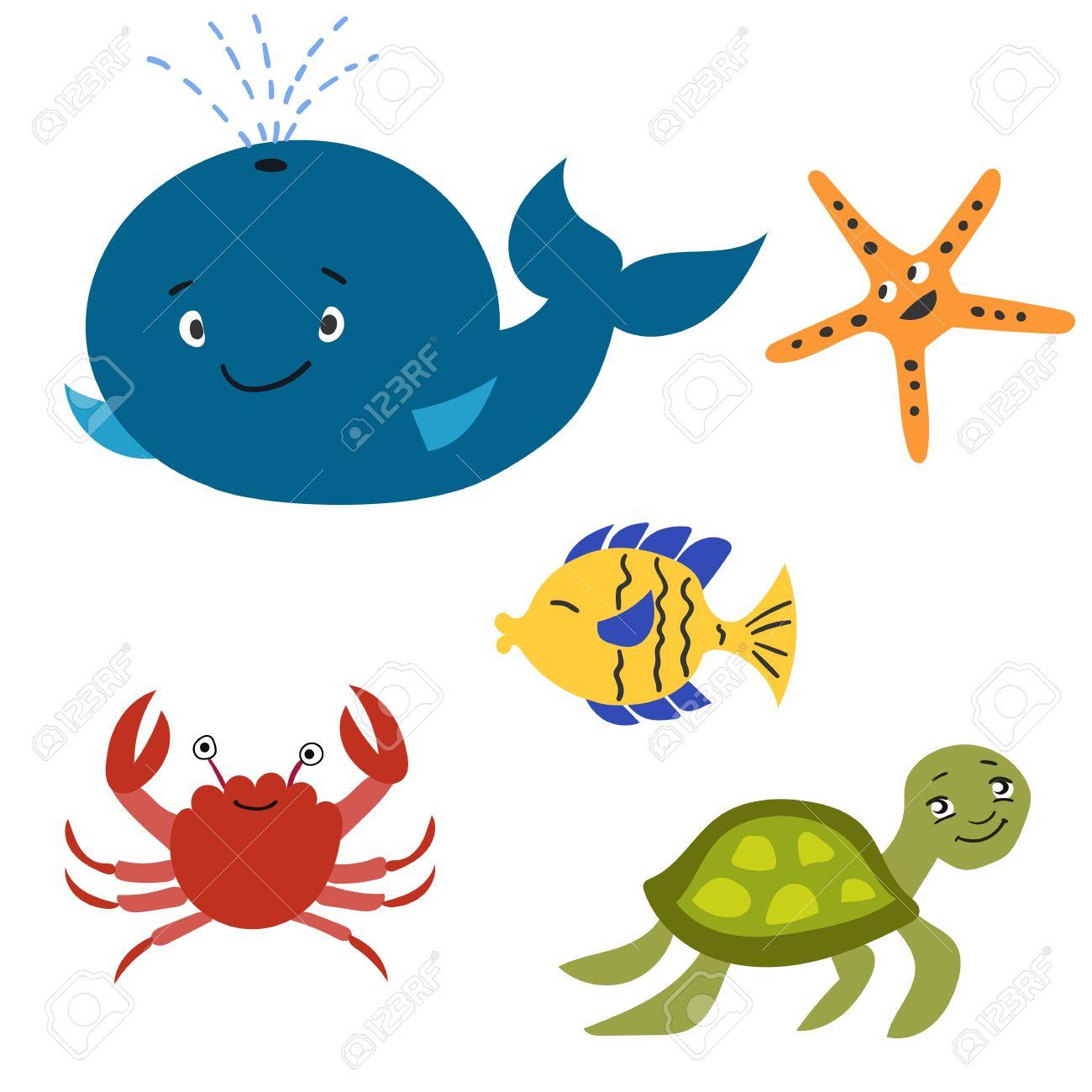 set of sea animals whale sea turtle tropical fish starfish