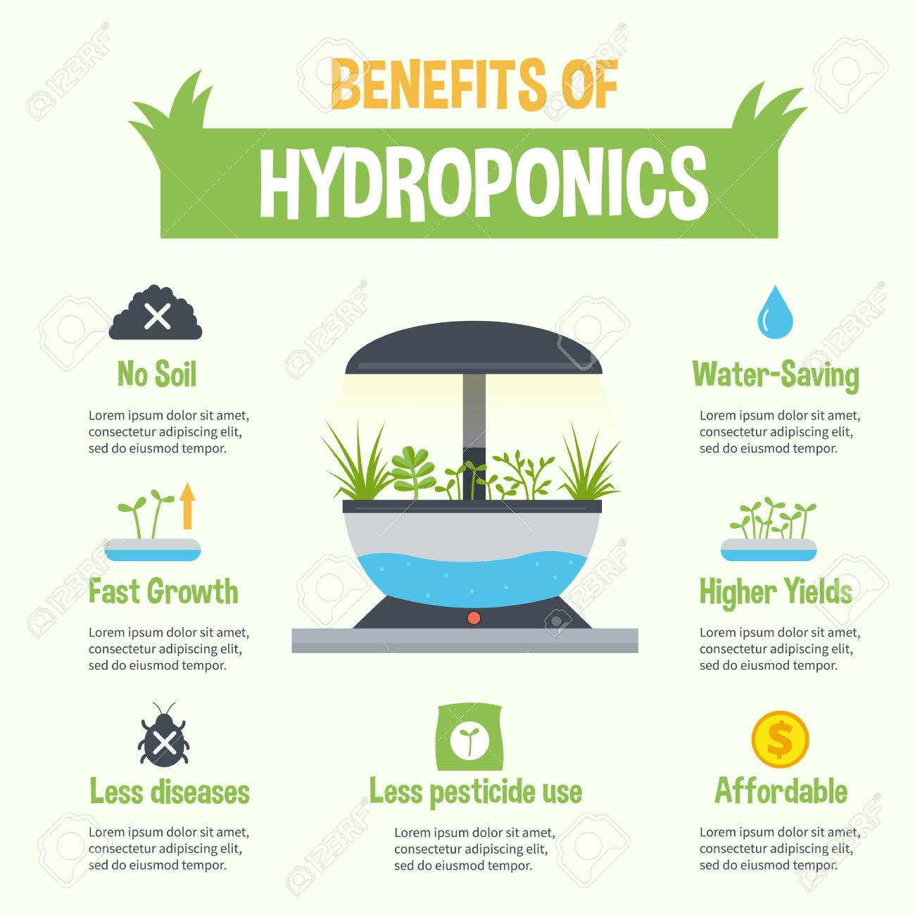 Hydroponics Benefits Infographic Vector Hydroponic Gardening