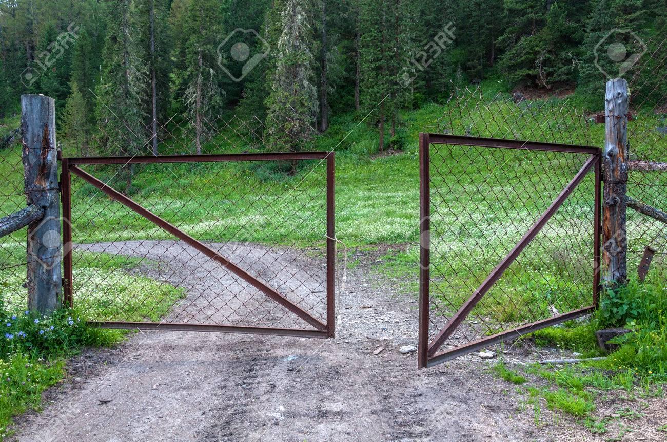 Zaun Tor Aus Stahlgitter Und Die Strasse In Den Wald Fuhrt