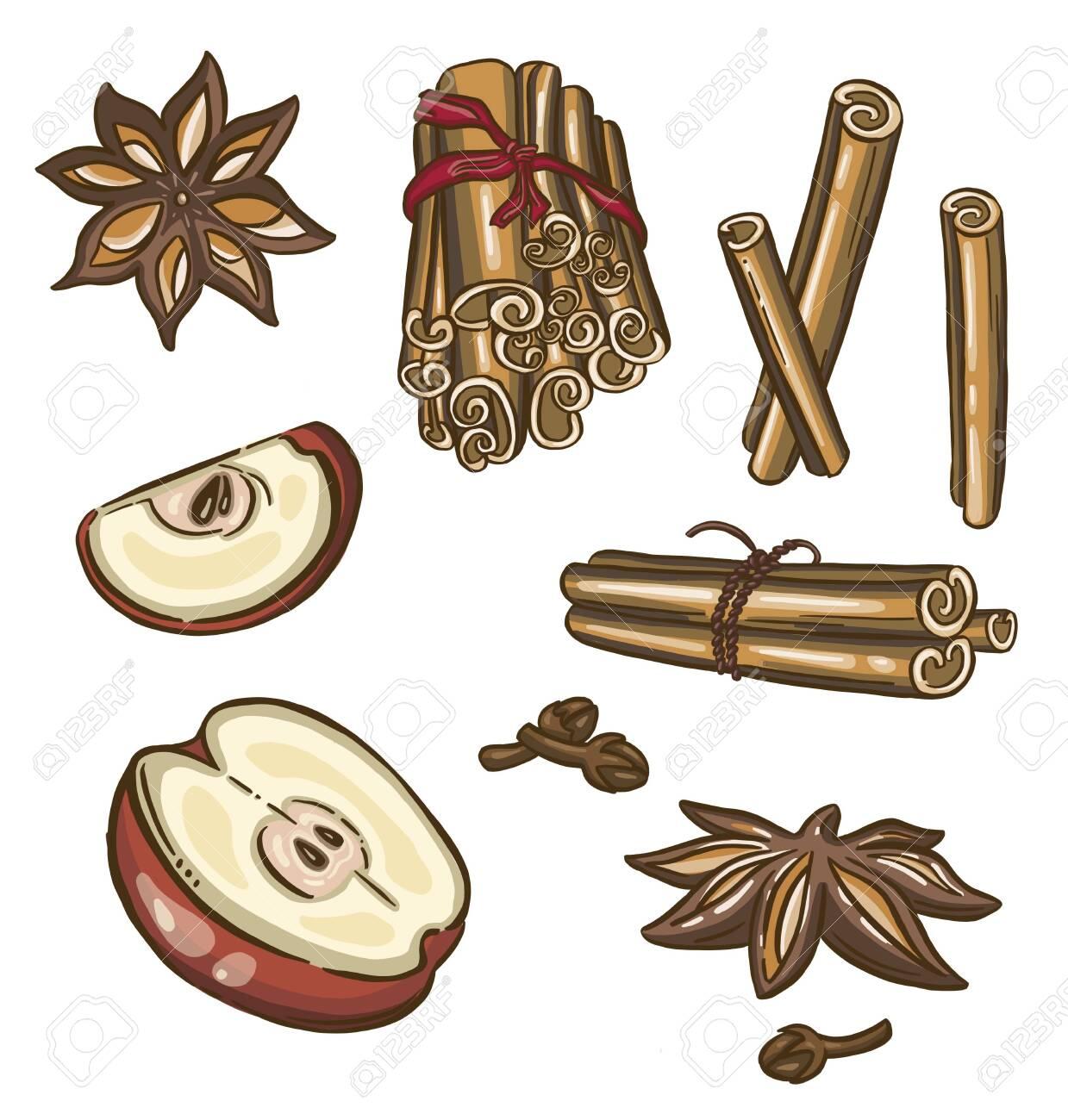 Christmas spices, star anise. Vector illustration - 156928109