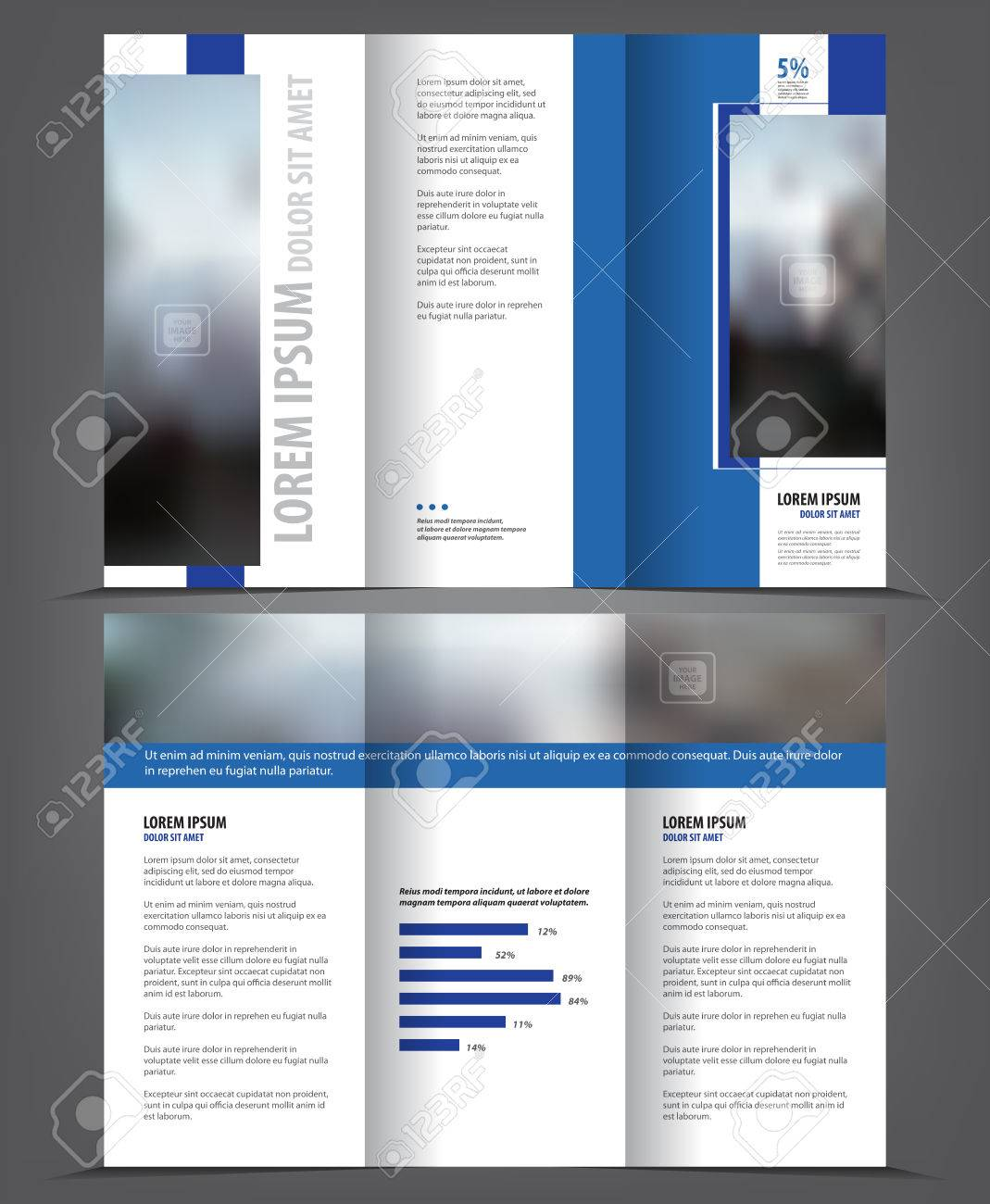 vector tri fold brochure template design concept business trifold