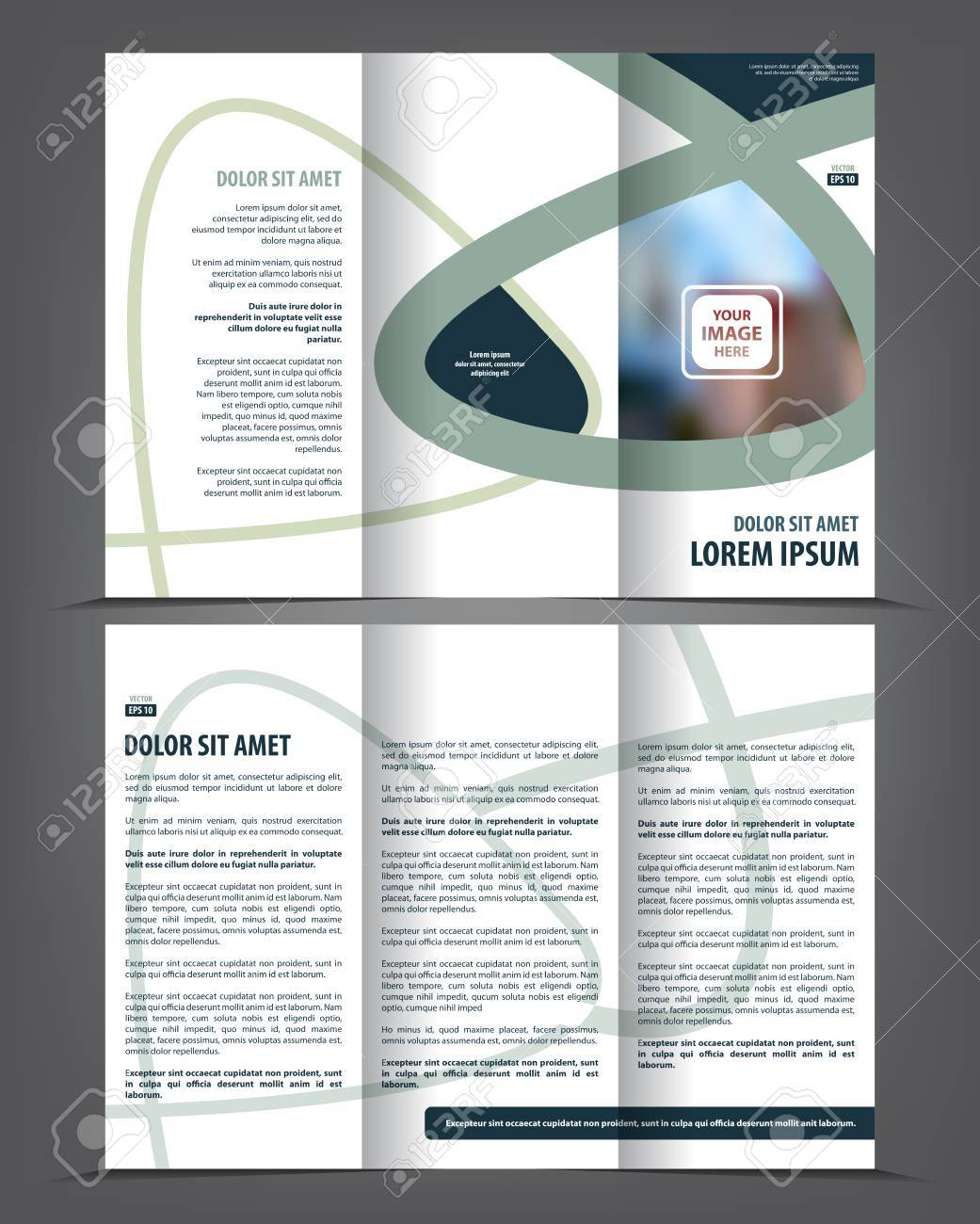 vector tri fold brochure template design concept business leaflet