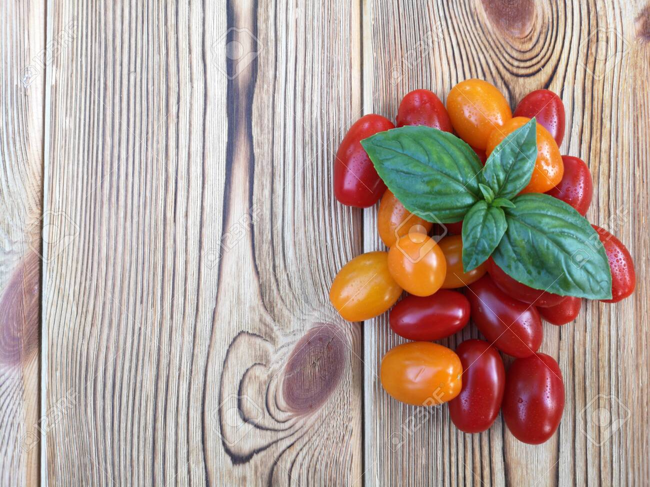 Cherry tomatoes and basil leaves on wooden background. Selective focus. The concept of consumption of local products. Copy space. - 150013612