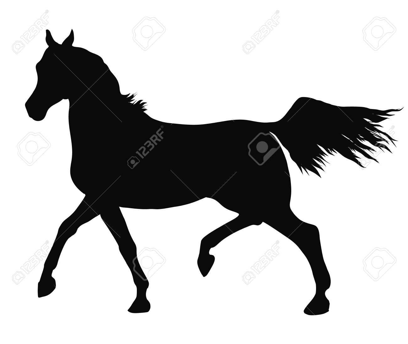 A Silhouette Of A Trotting Arabian Horse Royalty Free Cliparts Vectors And Stock Illustration Image 111997686