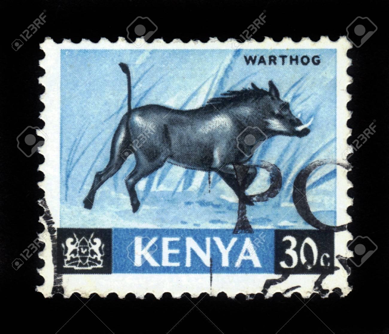 KENYA - CIRCA 1964  A stamp printed in Kenya shows warthog, circa 1964 Stock Photo - 16944382