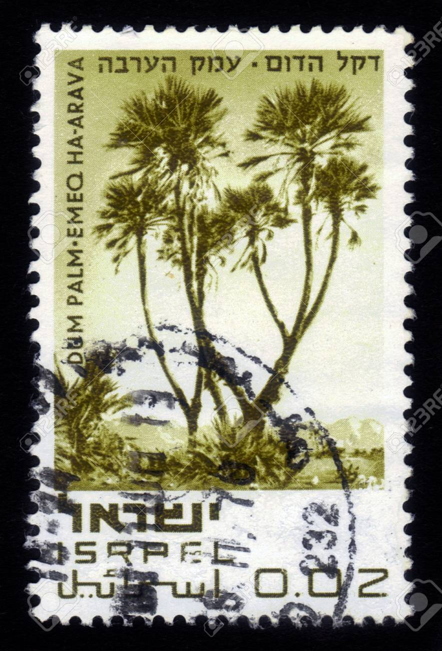 ISRAEL - CIRCA 1970  A stamp printed in Israel, shows Dum Palm - Emeq Ha-Arava, series  Nature Reserves of Israel  ; series, circa 1970 Stock Photo - 17326952