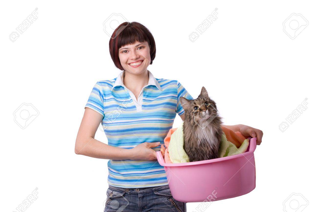Housewife with laundry basket with dirty cat.  A young woman holding a basket of folded laundry. Time for laundry day. Stock Photo - 7169824