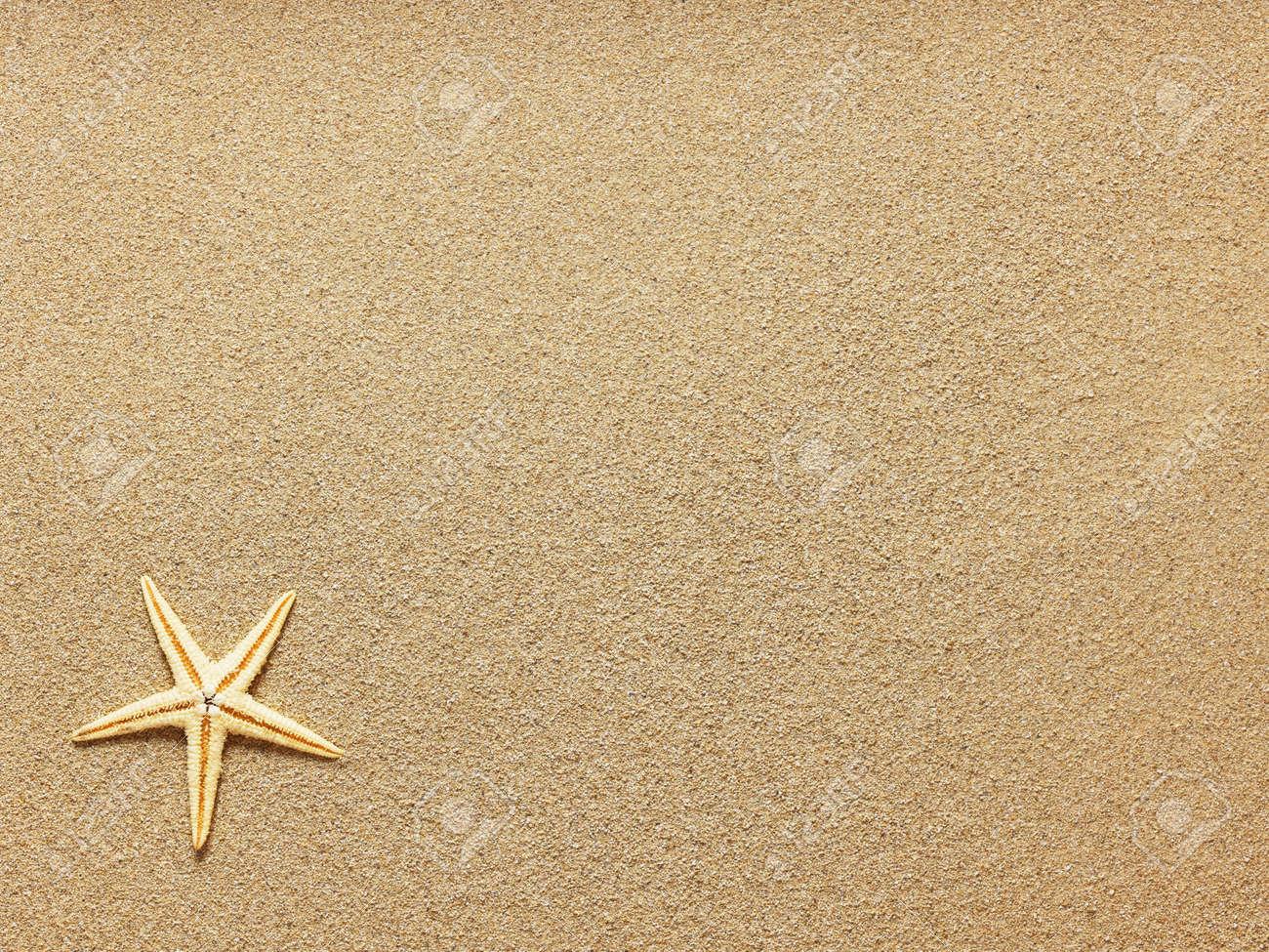 starfish on beach sand close up tiền bản quyền hình ảnh miễn phí