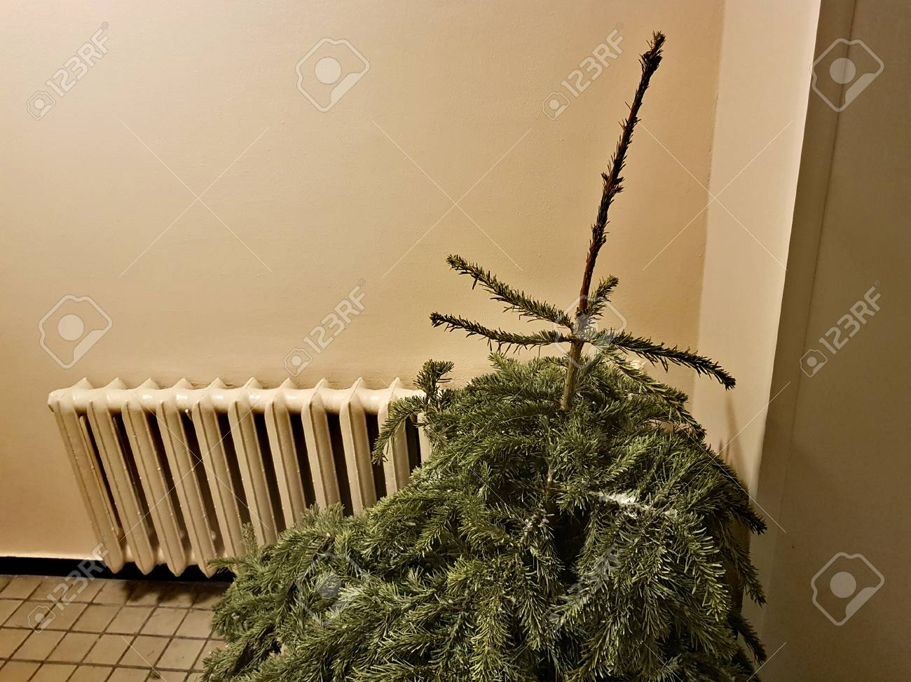 Green Christmas Tree For Recycling After The Holidays On The Stock