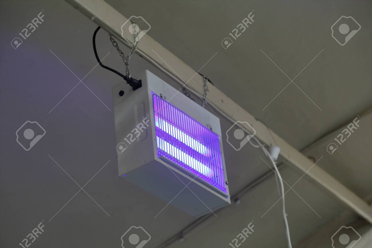 UV trap for flying insects in the food production workshop - 133107687