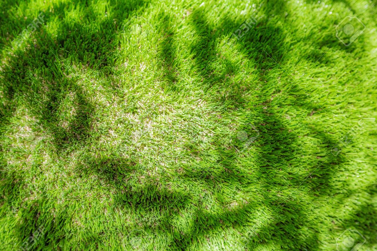 Bright green plastic grass as garden and yard decor - 152876899