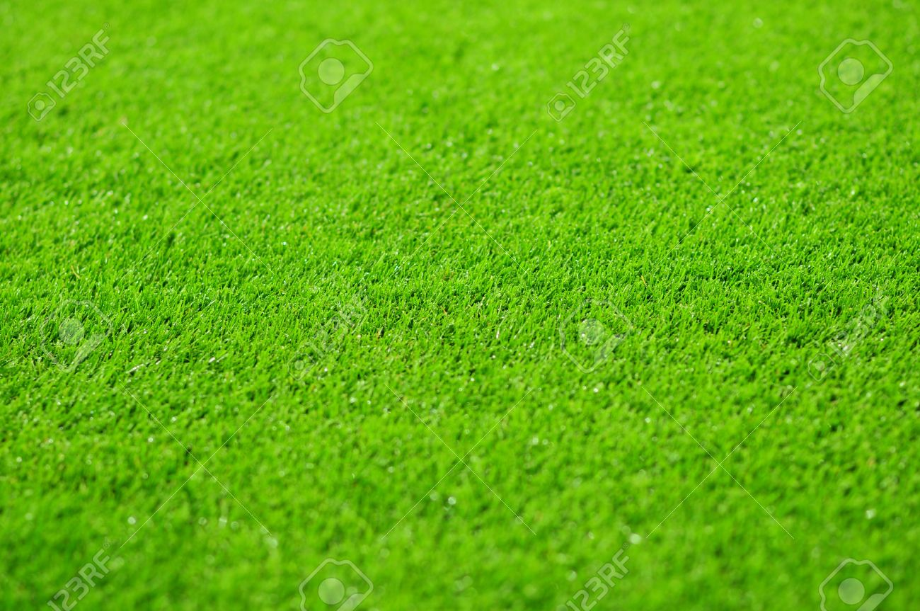 grass background of the soccer football stadium pitch stock photo