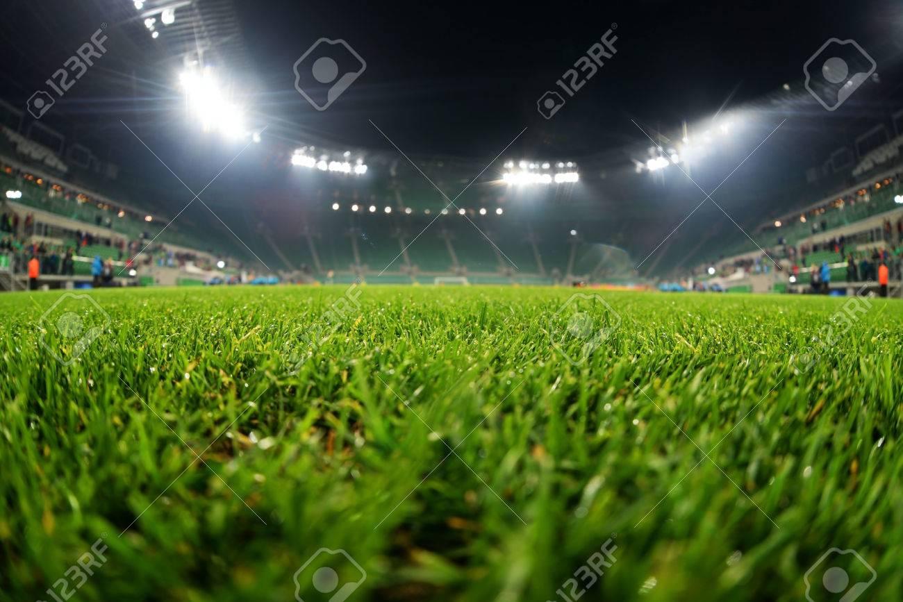 stadium, close up on grass - 29207236