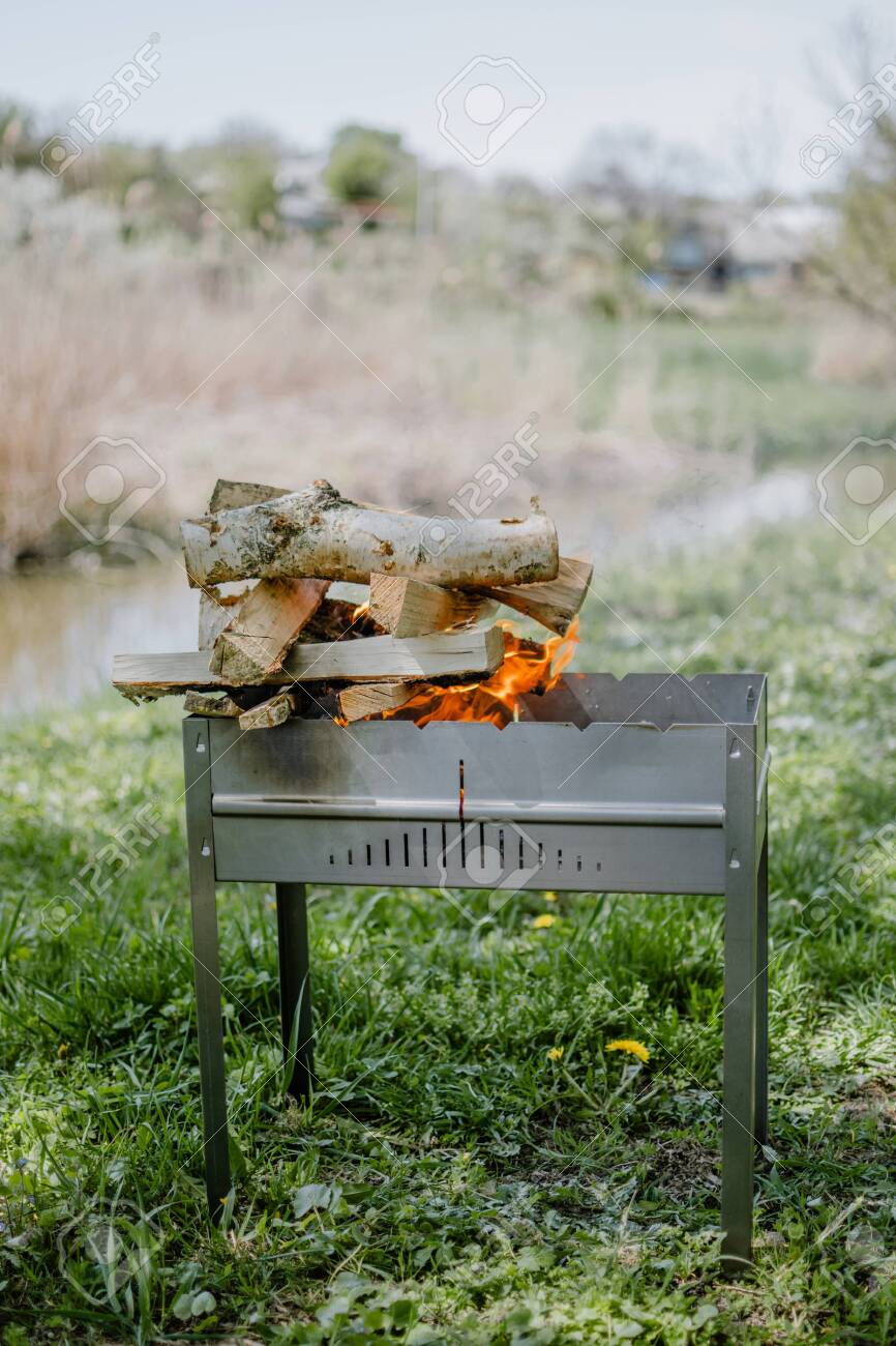 Bonfire, picnic, barbecue, barbecue firewood, cook, barbecue