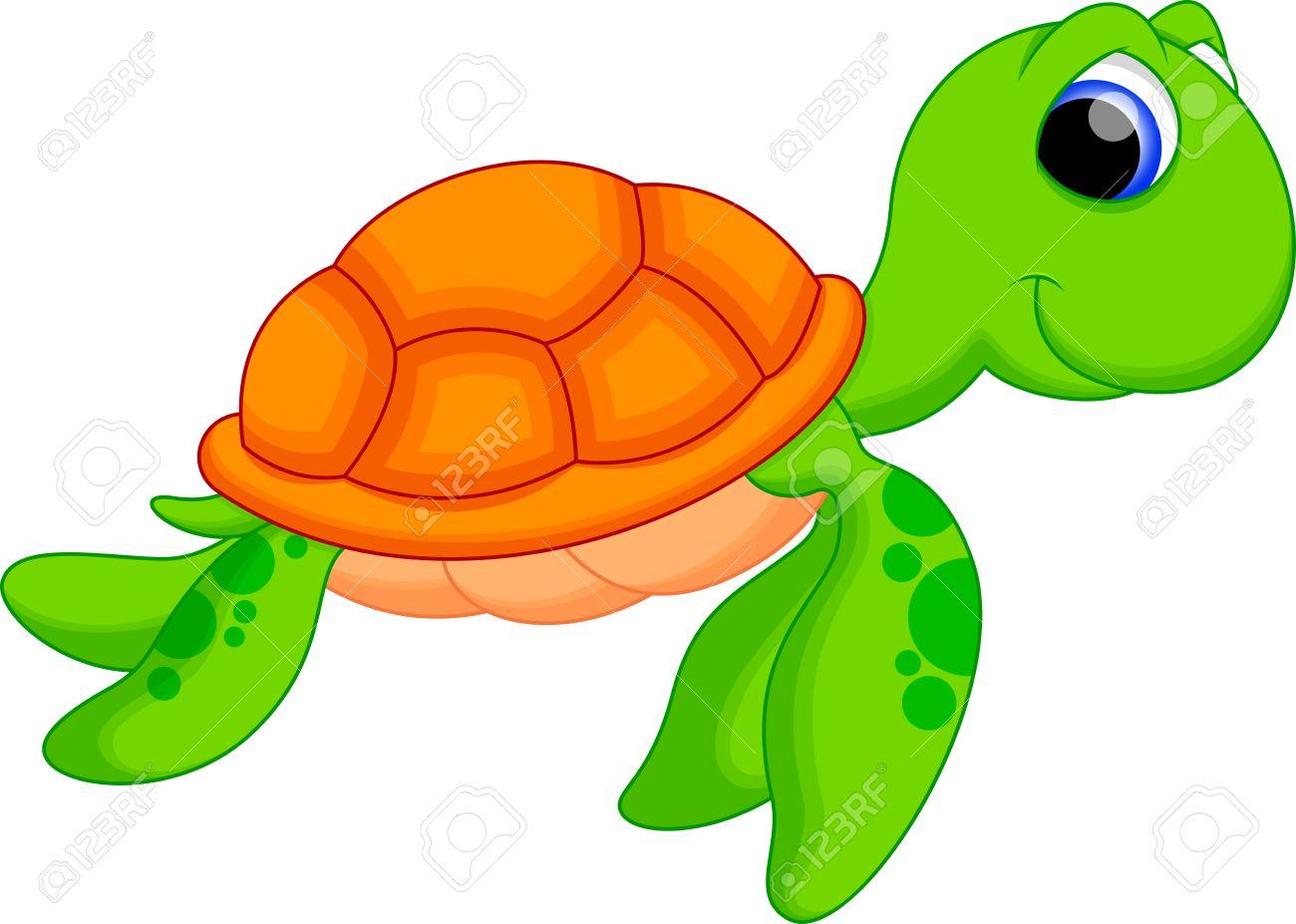 turtle cartoon stock photos royalty free turtle cartoon images