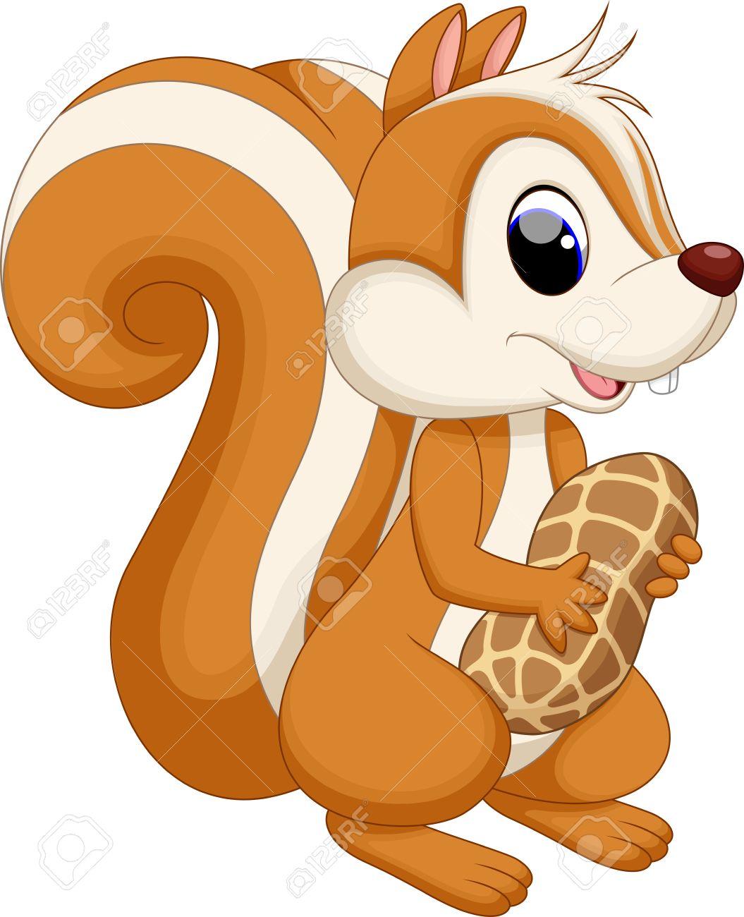 Surge In Super Fat Squirrels? WBUR s The Wild Life Cute cartoon squirrel pictures