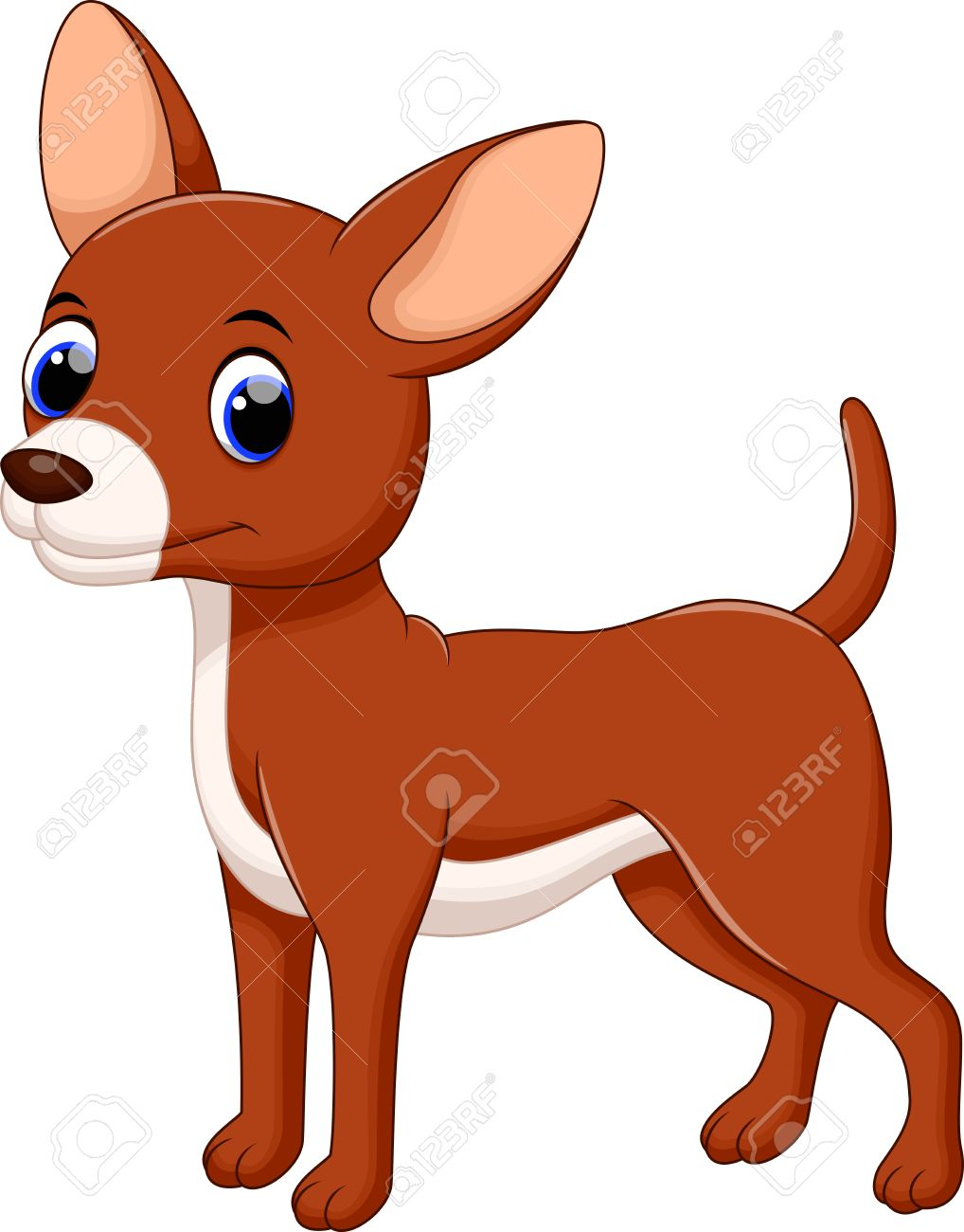 cartoon chihuahua stock photos u0026 pictures royalty free cartoon