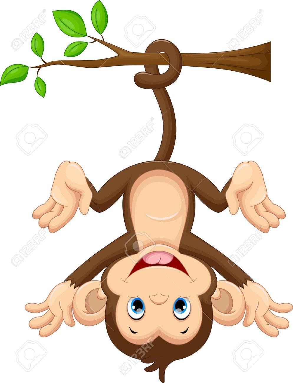 Cute baby monkey hanging on tree - 50993716
