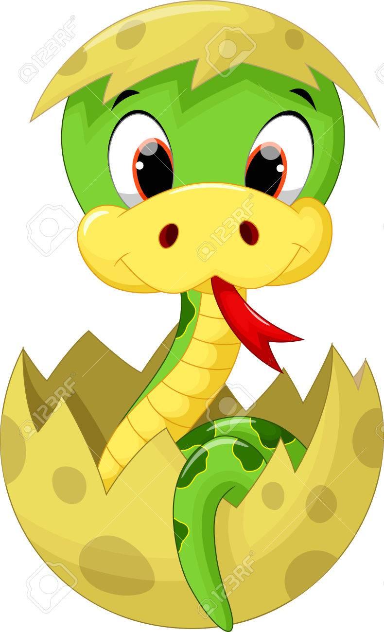 Cute baby snake cartoon - 51794308