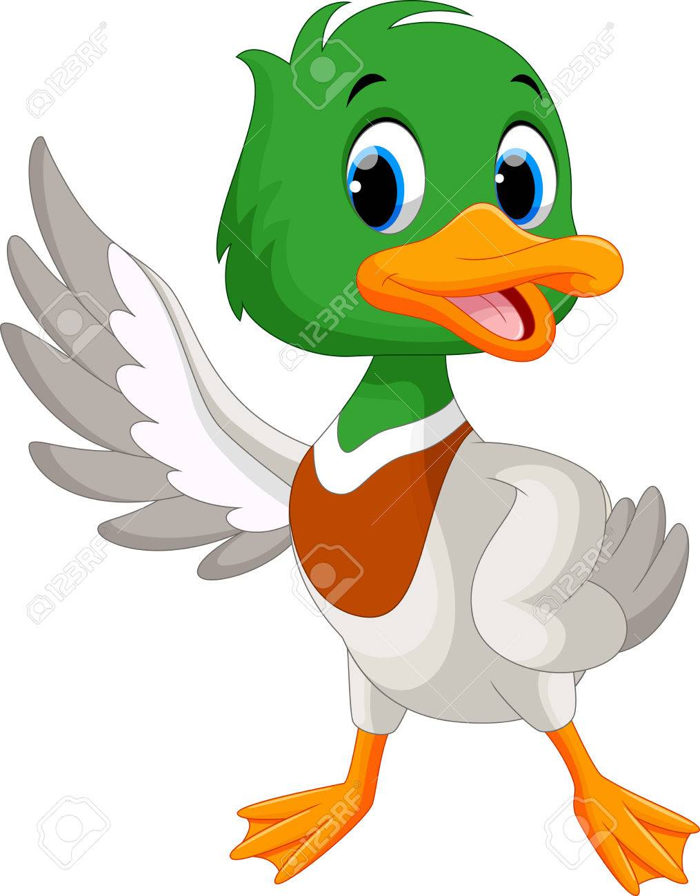 Cute baby duck waving its wings - 55049623
