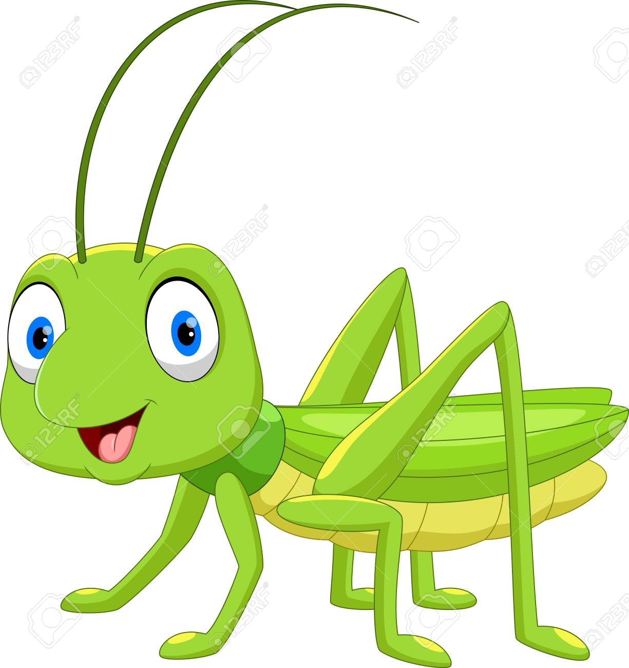 5de393003 Cute grasshopper cartoon isolated on white background Stock Vector -  104461003