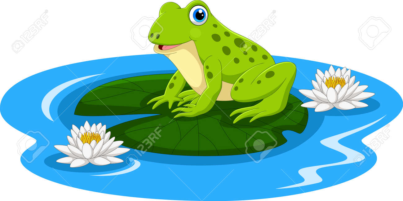Cute frog on the lily water - 165285585
