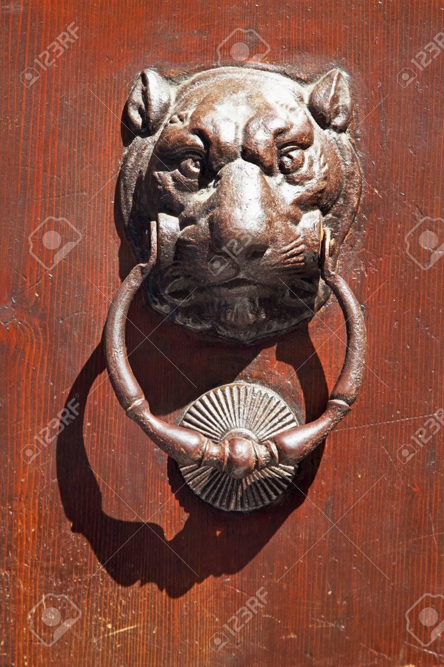 Metal Lion Door Knob On Dark Wooden Background. Stock Photo, Picture ...