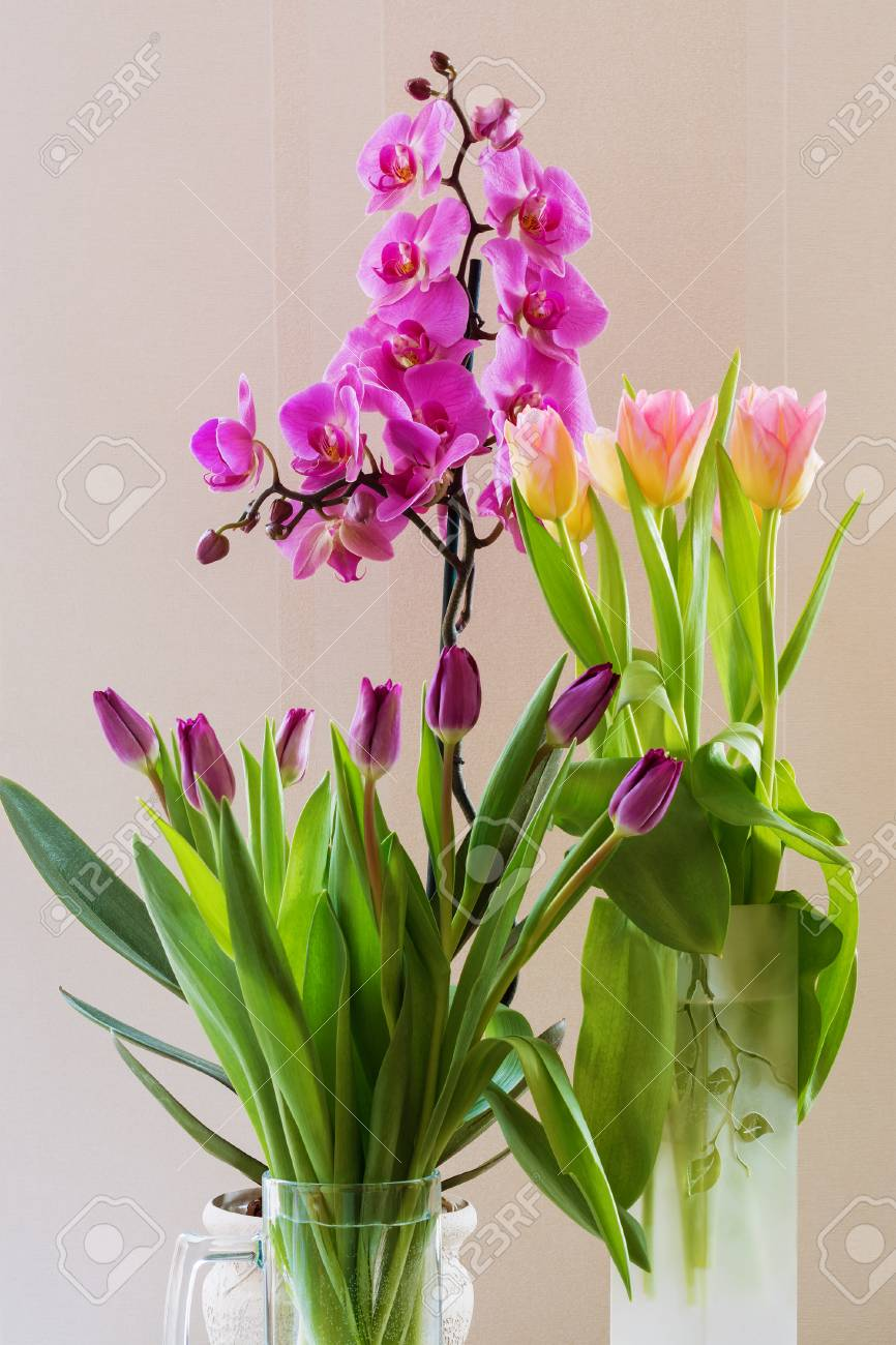 Bouquet Of Spring Flowers, Purple, Pink Tulips And Phalaenopsis ...