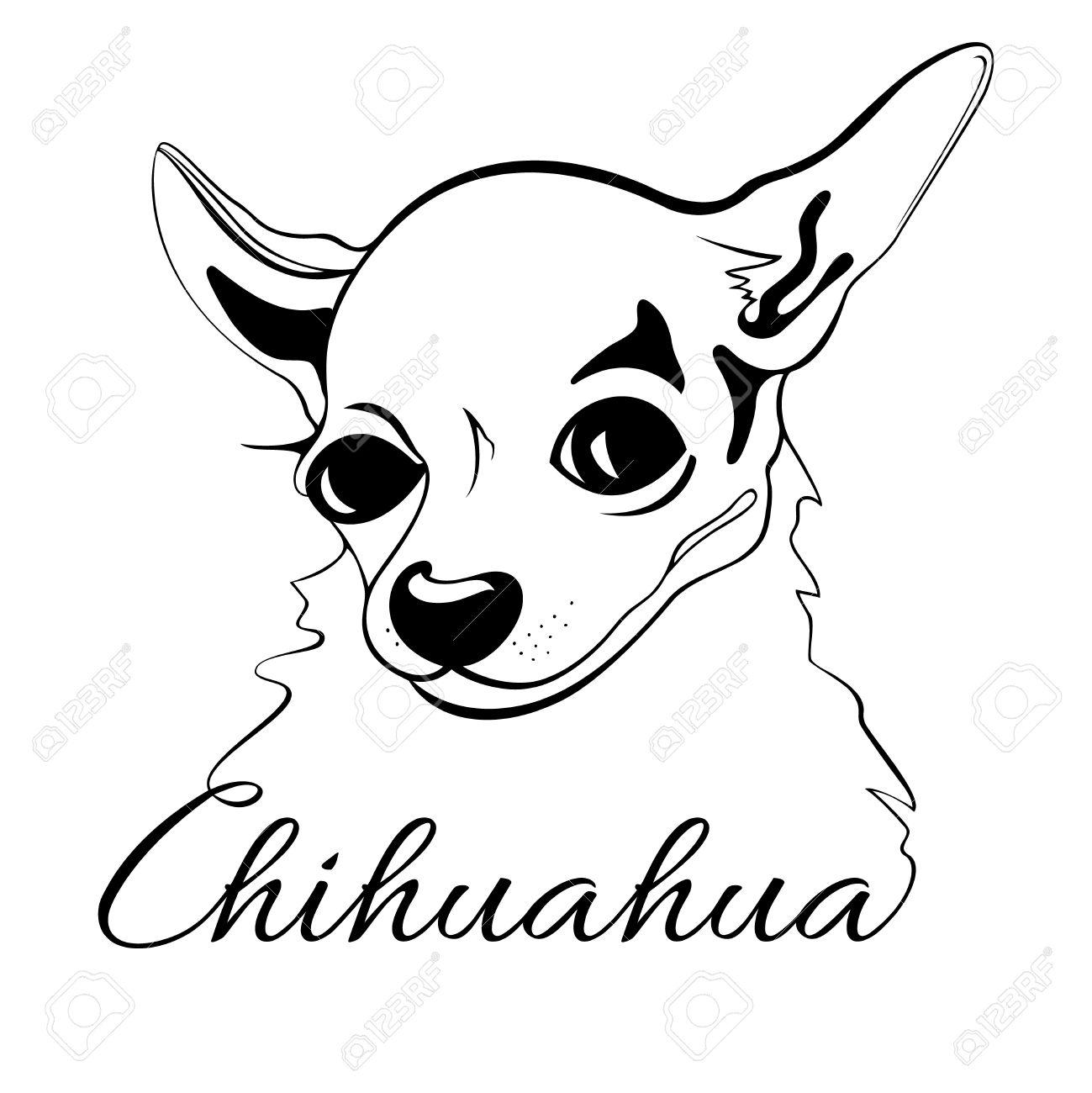 Dessin De Contour De La Tête Du Chien Et Les Mots Chihuahua