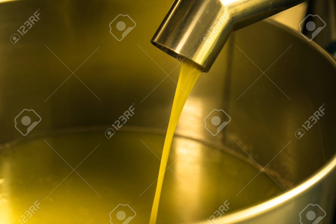Extraction of oil from olives in a modern farm. - 99596449