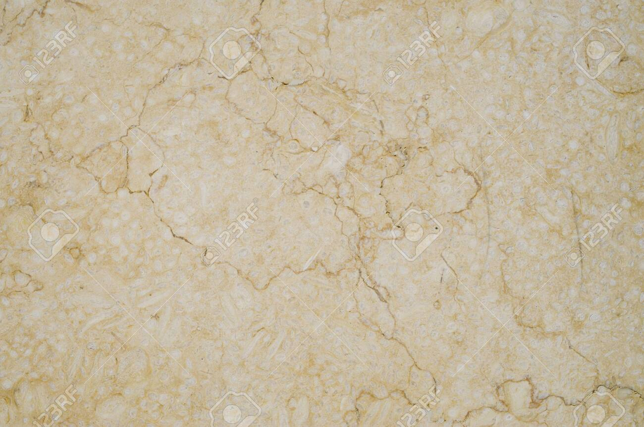 Polished sandstone with veins for cladding slab closeup - 120945459