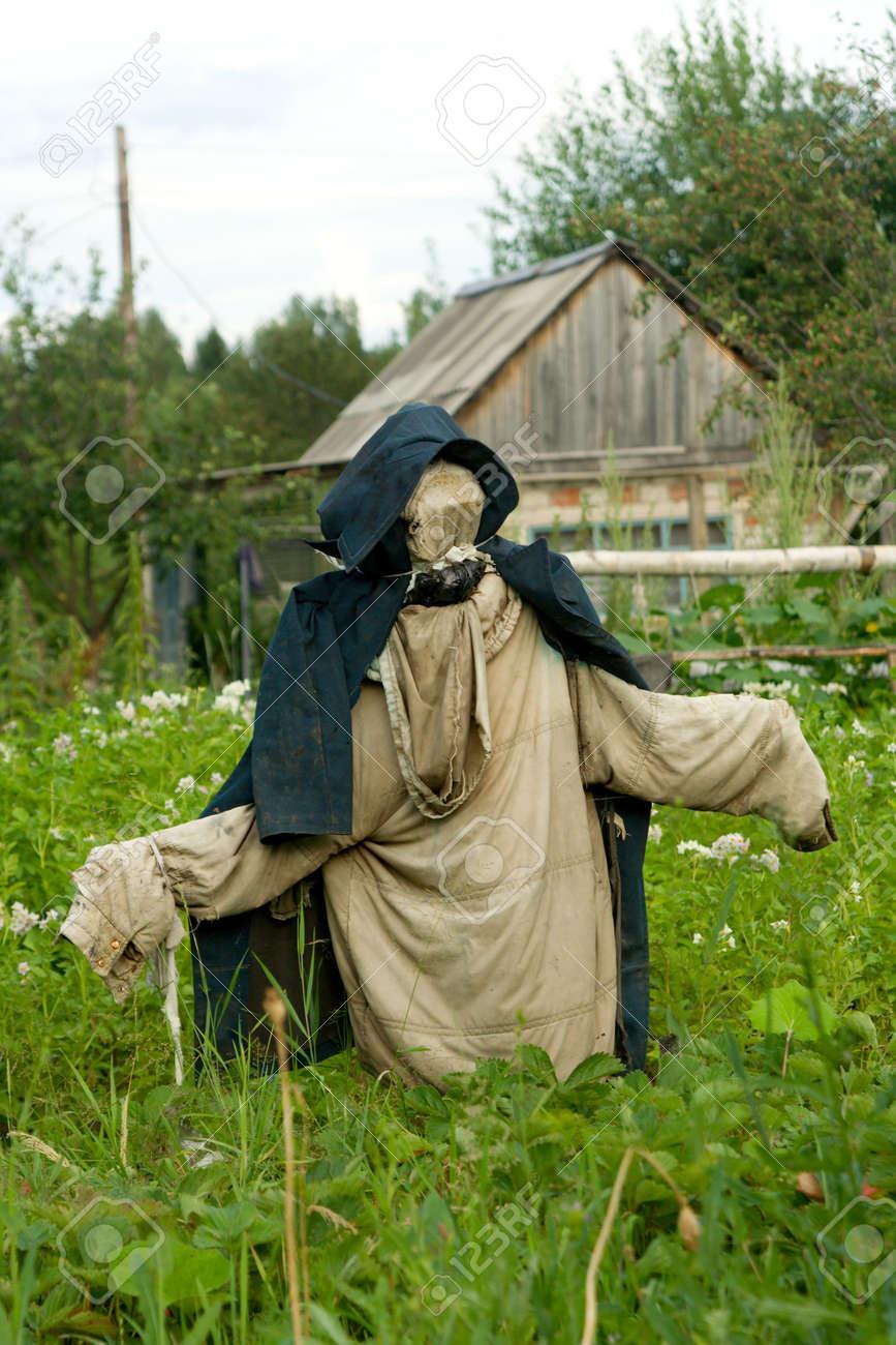 Garden scarecrow for scaring away of birds Stock Photo - 1304045
