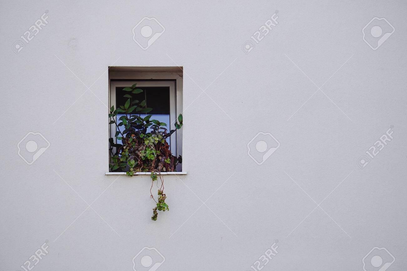 window in the white building facade in Bilbao city Spain - 122598642