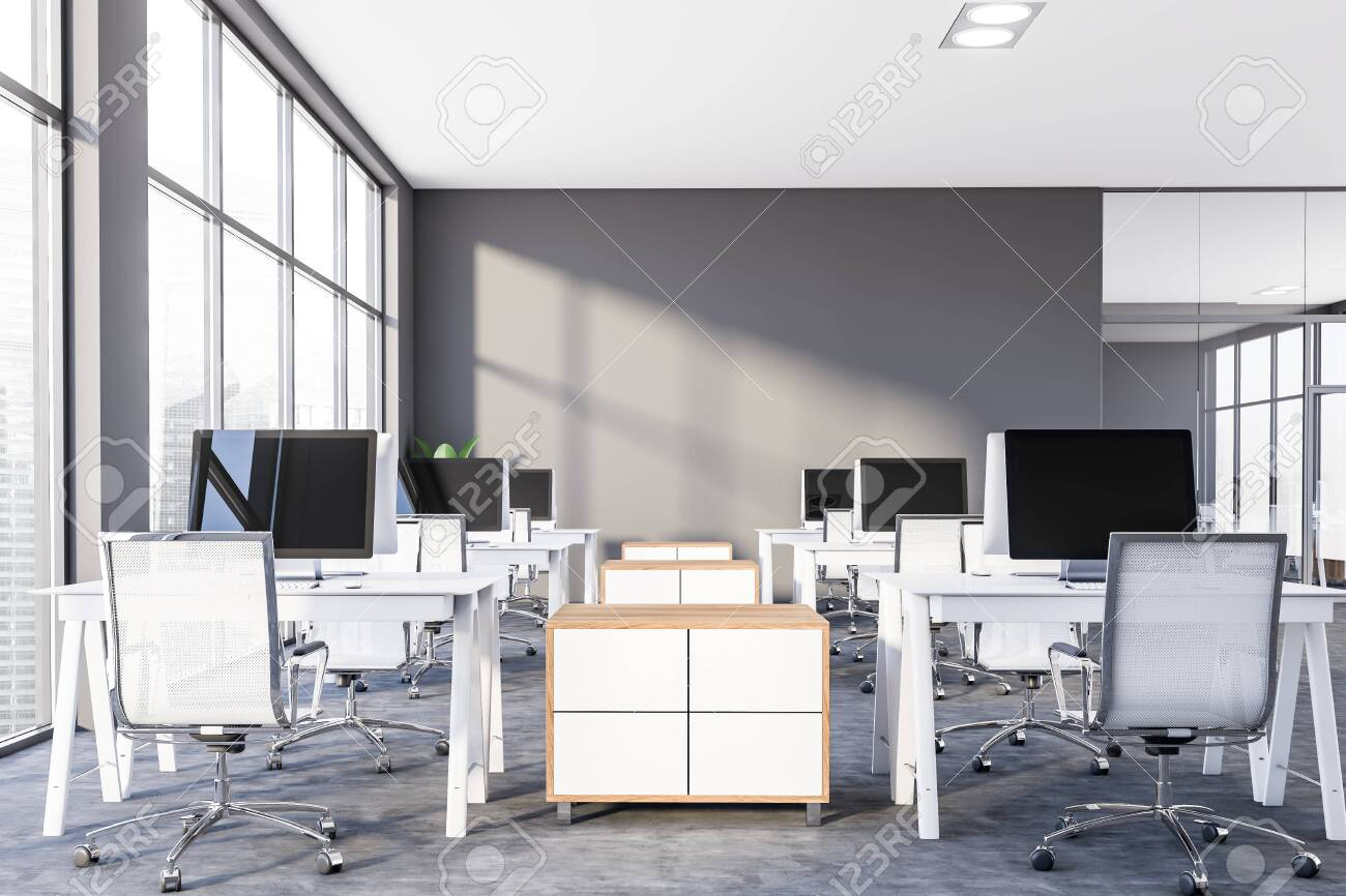 Interior of modern office or computer lab with gray walls, panoramic..